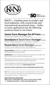 paragon city private limited lahore jobs paperpk jobs k ns company jobs 2017