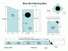 ideas about Blue Bird House on Pinterest   Bird House Plans       ideas about Blue Bird House on Pinterest   Bird House Plans  Birdhouses and Bluebird Houses