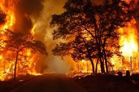 Αποτέλεσμα εικόνας για πυρκαγια