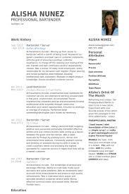 server resume samples   visualcv resume samples databasebartender   server resume samples