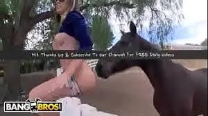 Búsqueda 'horse fuck women pussy horny' - XNXX.COM