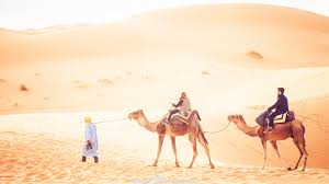 Image result for sahara desert morocco
