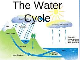 water cycle process description essay   essay for you  water cycle process description essay   image