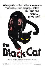 the black cat horrorpedia the black cat 1981 poster