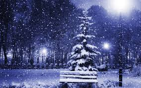 Happy Holidays from Garden Essence             Oils and a prosperous New Year
