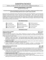 executive resume samples free  day coexecutive resume samples