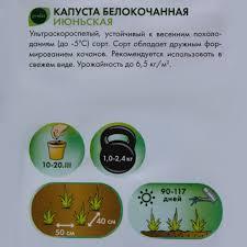 <b>Семена Капуста белокочанная</b> Geolia «<b>Июньская</b>» в Москве ...
