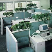 TOPsiders Are Partition Mounted Planters That Allow You To Add Greenery Into Your Office Without Taking Up
