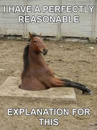 Image result for DRUNK CLYDESDALE HORSE CARTOON