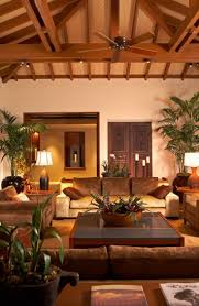 tropical living rooms: nice tropical style living room with decorative planters ideas