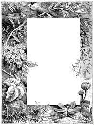 border of flowers from title page 2512x3328 1m jpg