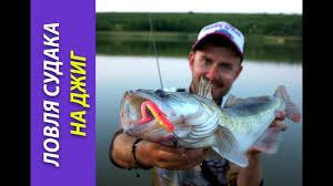 Ловля судака на джиг: выбор силиконовых <b>приманок</b>. [<b>Crazy Fish</b> ...