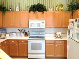 Kitchen Remodeler Houston Tx Kitchen Cabinets Houston Tx Maxphotous Design Porter
