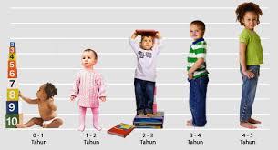Image result for usia sekolah