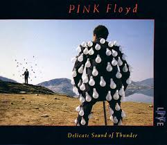 Pink Floyd - <b>Delicate Sound Of</b> Thunder | Релизы | Discogs