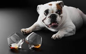 <b>Стаканы</b> Cognac <b>Normann Copenhagen</b> купить в Москве в ...