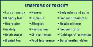 Image result for toxic metals