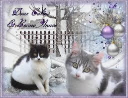 """Résultat de recherche d'images pour """"images gif bonne année avec chats"""""""