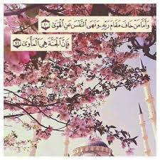 مرحبا رمضان Images?q=tbn:ANd9GcSYWEOwXplqB2cYI6jbPQDV8aW9K7WOugp4JCjH9NBb1wY8tqyV