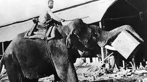 bbc radio the real george orwell the real world of george orwell orwell s essay shooting an elephant was published in 1936