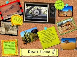 short essay on desert biomes words