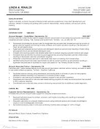 client development manager sample resume guest seating chart client executive resume sales executive lewesmr great personal sample executive resume format