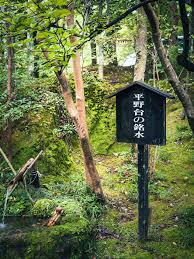 The best hot <b>spring</b> in <b>Japan</b> – RIIDESIGN BOOKS