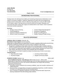 Resume Examples  Resume Template Example Sales Professional     Rufoot Resumes  Esay  and Templates