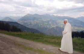 Image result for pope benedict xvi the green pope
