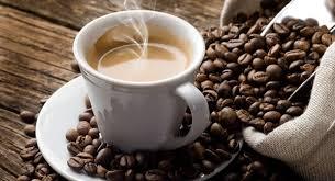Résultats de recherche d'images pour «café arabica»