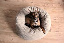 Bruce likes to curl up, so this <b>donut</b>/nest dog <b>bed</b> would be perfect.