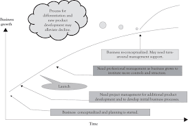 figure 141 critical organizational activities during business life cycle business life concepts