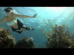 <b>GoPro</b> Flat Lens <b>Dive Housing</b> - YouTube