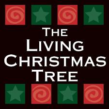 living xmas tree
