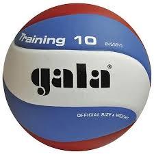 Купить <b>Мяч волейбольный Gala Training</b> 10 р.5 (BV5561S) в ...