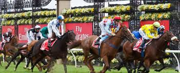 Image result for melbourne cup 2015