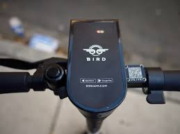 Bird <b>Scooter for</b> Sale: Where to Buy Birdie <b>Scooter for Kids</b> | Money