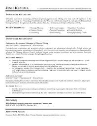 ideal resume format accounting resume format    accounting