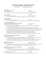 how to write a resume in english writing a resume video editor help english writing college essay writing service that will fit