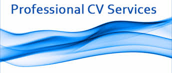 CV Surgeon   Online CV Building App