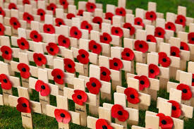 remembrance day essay topics soldiers foto von benito    fans    remembrance day essay topics soldiers