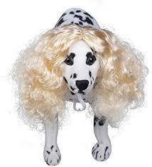 Preeyawadee Funny Long Curly Hair Pet Dog Wig for ... - Amazon.com