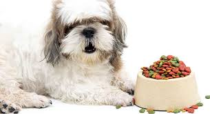 Best <b>Dog Food</b> For Shih Tzu Puppies, Adults, And <b>Senior</b> Dogs