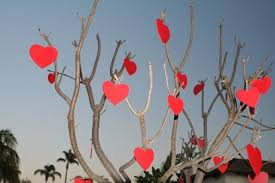Imagini pentru Poezii de Valentines day si Dragobete