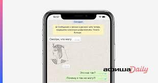 Как сделать <b>стикеры</b> для WhatsApp - Афиша Daily