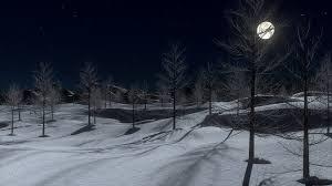 """Résultat de recherche d'images pour """"paysage enneigé nuit"""""""