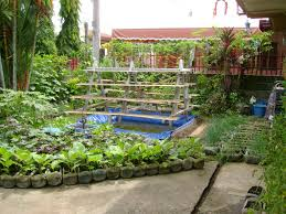 patio container garden ideas container gardening vegetables over concrete flor and backyard garden