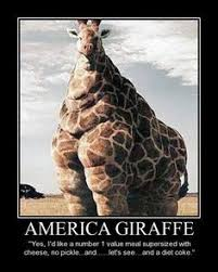 American Memes on Pinterest | Geography, The Zoo and Guns via Relatably.com