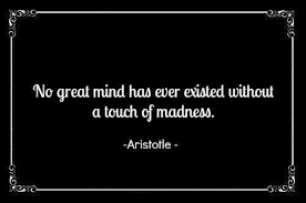 No great mind has ever existed without a touch of madness ... via Relatably.com
