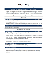 entry level project manager resume getessay biz 15 entry level project management samples inside entry level project manager